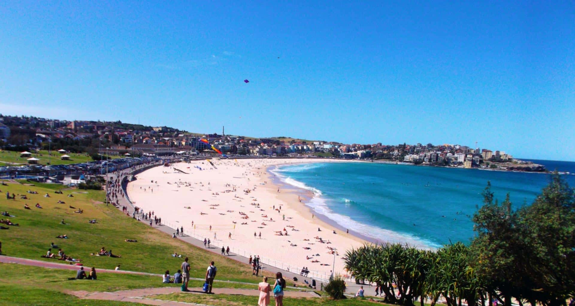how to get working holiday visa in australia