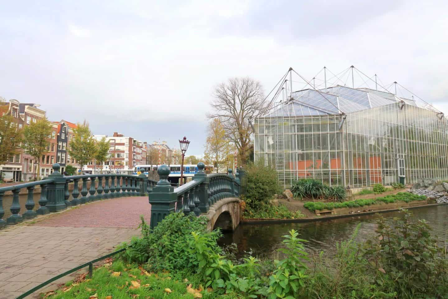 Amsterdam one day solo guide botanical greenhouse