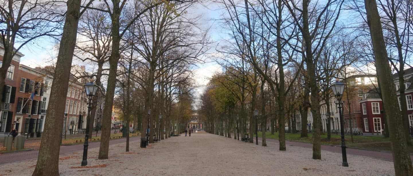 6 Feel Good Things to do in The Hague!
