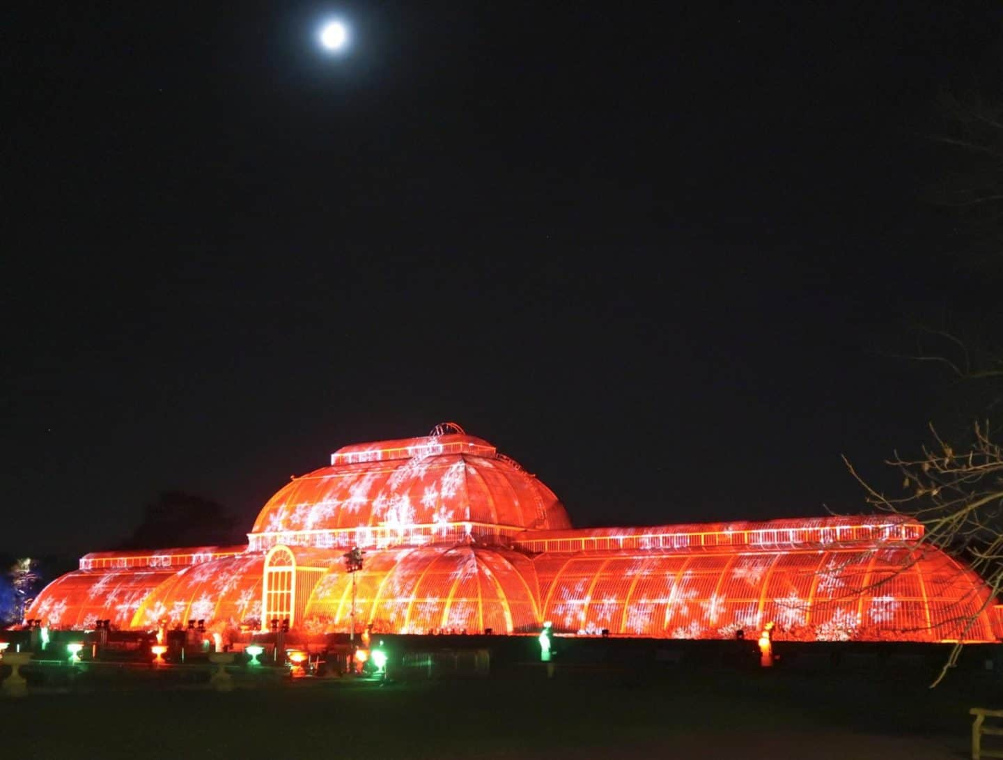 kew gardens at christmas light display