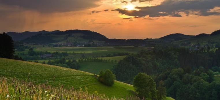 5 Things I Would Do On A Visit To The Black Forest in Germany!