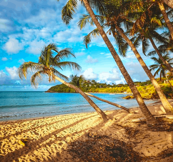 Things to do in Antigua and Barbuda beaches